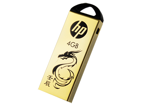 HP v228g USB Flash-enhet