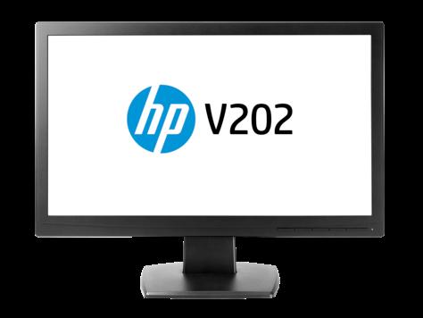 HP V202 19,5-Zoll-Monitor