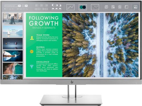 HP EliteDisplay E243 23.8-inch Monitor Head Only