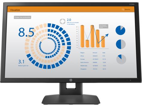 HP V24b Monitor